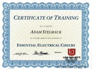 Essential Electrical Checks (4_25_13).pdf_page_1