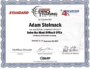 standard pro training adam
